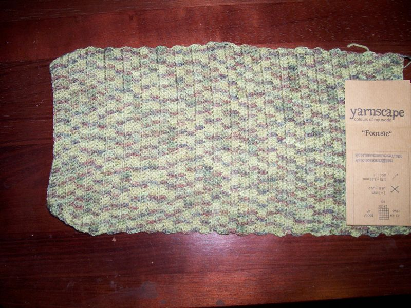 Fence & crochet 004
